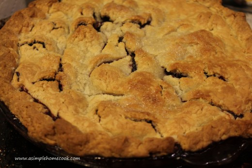 blackberry pie baked
